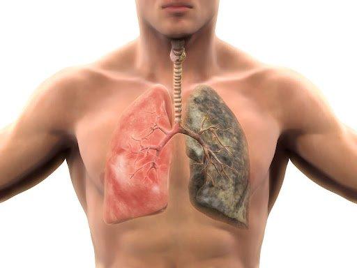 smoking body heals